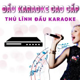 Đầu Karaoke Cao Cấp