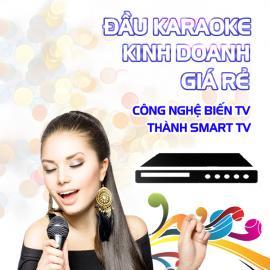 Đầu Karaoke Kinh Doanh Giá Rẻ