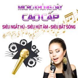 Micro Karaoke Cao Cấp Hay Bán Chạy Nhất- Vidia - 2019