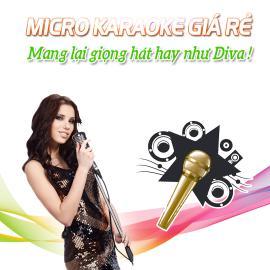 Micro Karaoke Không Dây Giá Rẻ