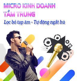 Micro Kinh Doanh Tầm Trung Bán Chạy - Vidia - 2019