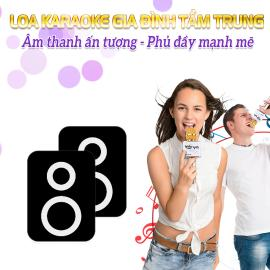 Loa Karaoke Gia Đình Tầm Trung