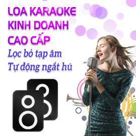 Loa Karaoke Kinh Doanh Cao Cấp