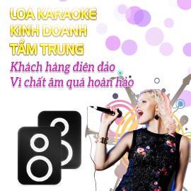 Loa Karaoke Kinh Doanh Tầm Trung
