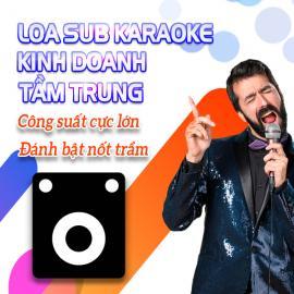 Loa Sub Karaoke Kinh Doanh Tầm Trung