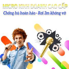 Micro Kinh Doanh Cao Cấp Bán Chạy - Vidia - 2019