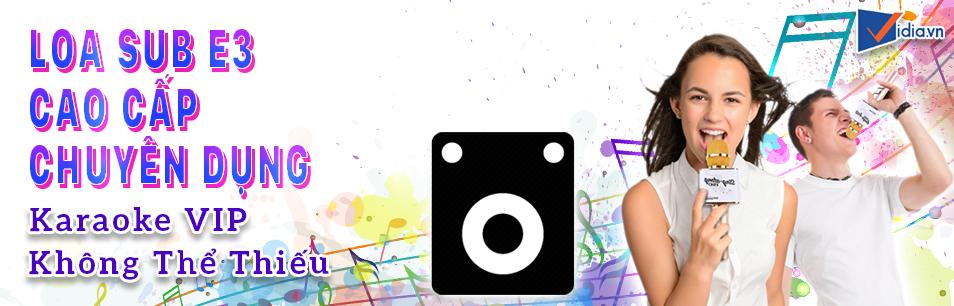 Loa Sub Chuyên Nghiệp Dành Cho Phòng Karaoke VIP