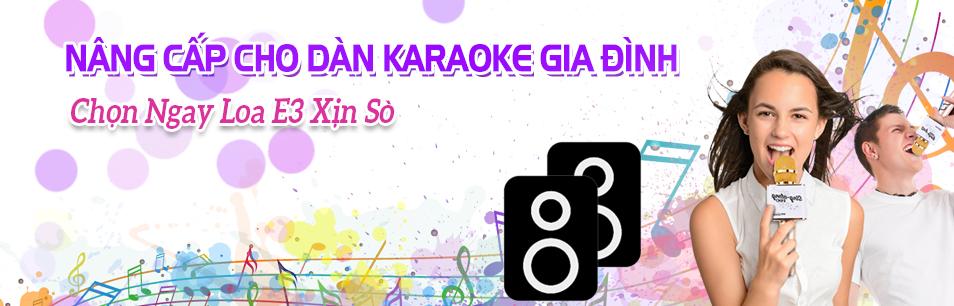 Chọn Loa E3 Xịn Xò Cho Dàn Karaoke Gia Đình Chất Lượng