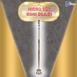 Micro Cột Kinh Doanh - Vidia - 2019
