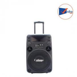 CALIANA ELECTRONICS T012