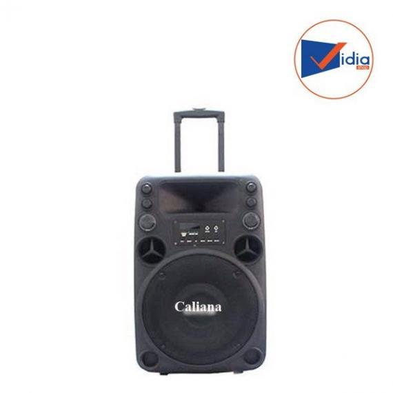 CALIANA ELECTRONICS T012