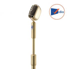 Micro Karaoke Đứng Bonus SF8