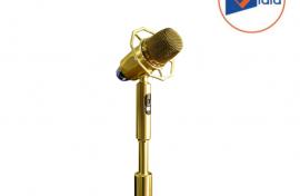 Micro Karaoke Đứng Bonus MF8