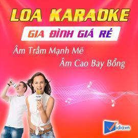 Loa Karaoke Gia Đình Giá Rẻ Bán Chạy - Vidia - 2020