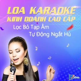 Loa Karaoke Kinh Doanh Cao Cấp Bán Chạy - Vidia - 2019