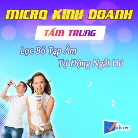 Micro Kinh Doanh Tầm Trung Bán Chạy Vidia - 2020