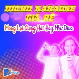 Micro Karaoke Không Dây Giá Rẻ Bán Chạy Vidia -2020