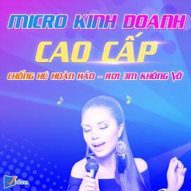 Micro Kinh Doanh Cao Cấp Bán Chạy Vidia - 2020