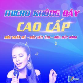 Micro Karaoke Cao Cấp Hay Bán Chạy - Vidia - 2019