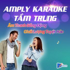Amply Karaoke Tầm Trung Bán Chạy Vidia - 2020