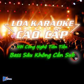 Loa Karaoke Gia Đình Cao Cấp Bán Chạy - Vidia - 2019