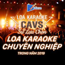 Loa Karaoke Cavs