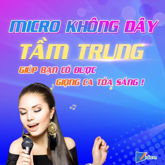 Micro Karaoke Không Dây Tầm Trung Bán Chạy Vidia -2020