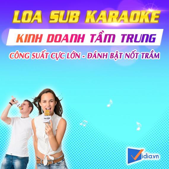 Loa Sub Karaoke Kinh Doanh Tầm Trung 4.5 Tấc Bán Chạy Vidia - 2021