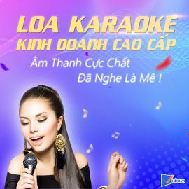 Loa Karaoke Kinh Doanh Cao Cấp Bán Chạy Vidia - 2020