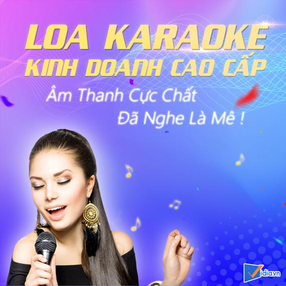 Loa Karaoke Kinh Doanh Cao Cấp Bán Chạy Vidia - 2021